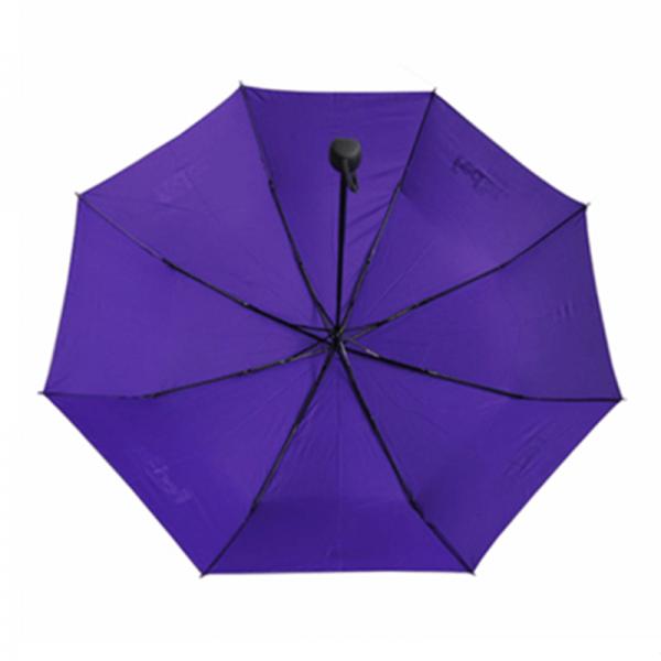 Custom3 Folding Umbrella with Logo Printing