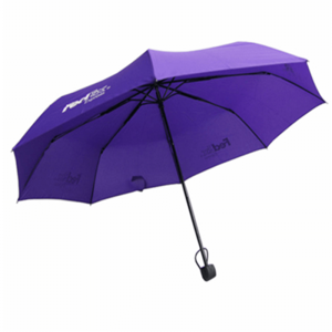 Custom3 Folding Umbrella with Logo Printing