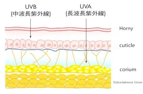 UV damage